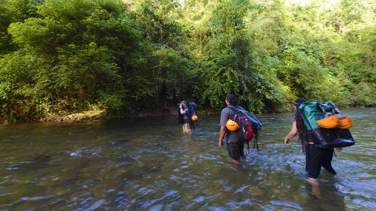 Pacz Tours Barton Creek