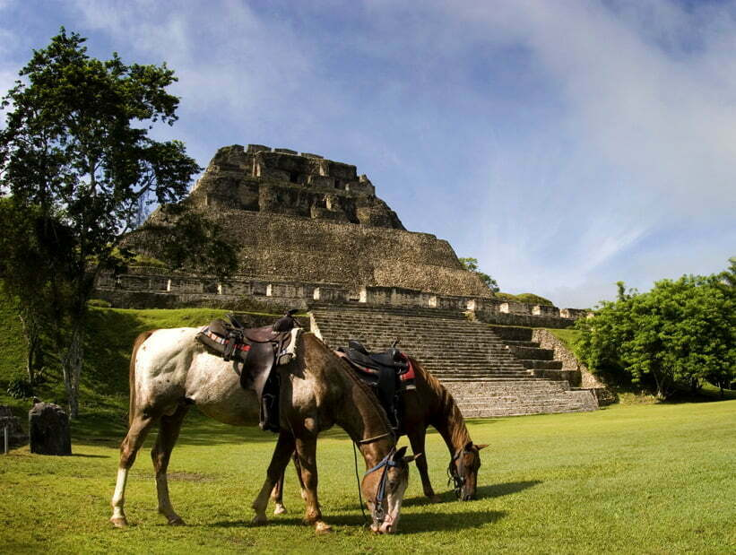 cayo horseback riding