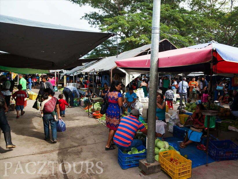 san ignacio farmer market
